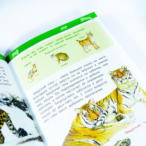 Энциклопедия для детского сада Животные России