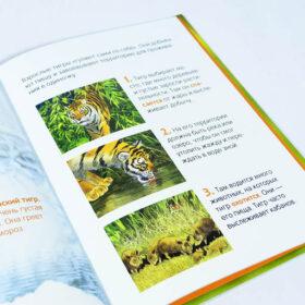 Энциклопедия для малышей Тигры