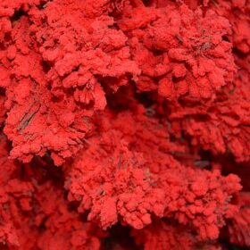 Красная с обсыпкой 150 см